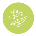 soft-icon-lightgreen.png